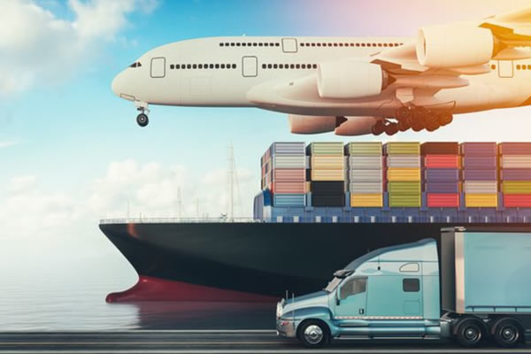 Cargo Transportation & Logistics